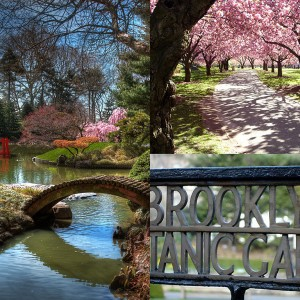 brooklyn-botanic-garden
